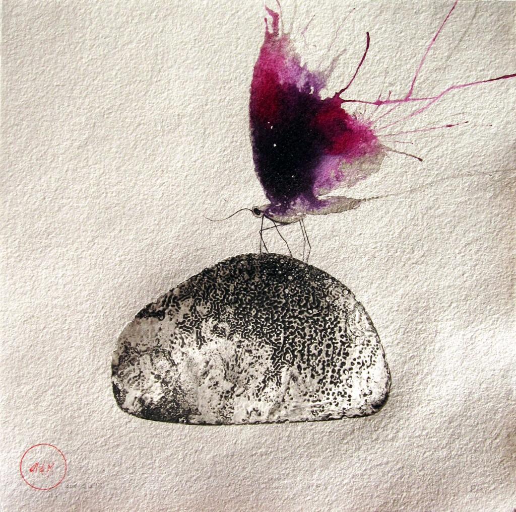 Pedra-papallona-morat