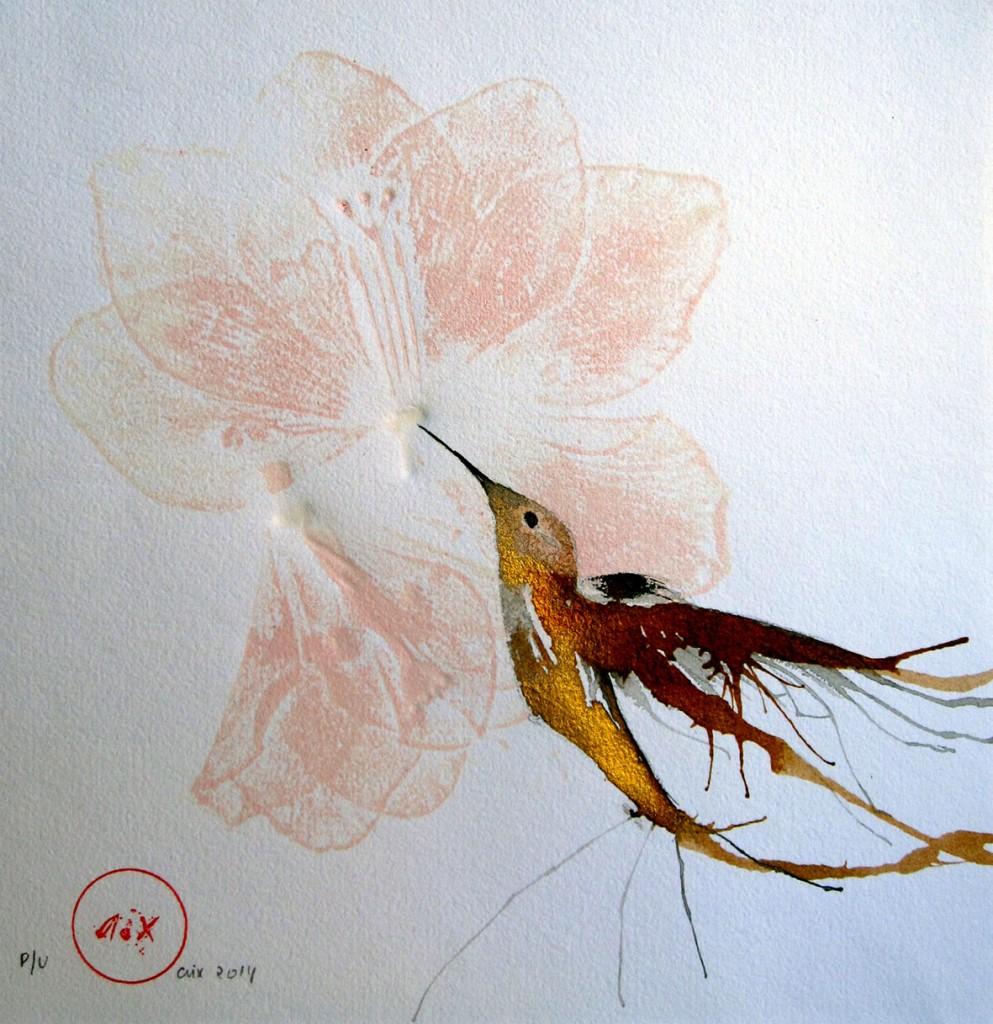colibri-flor-daurat