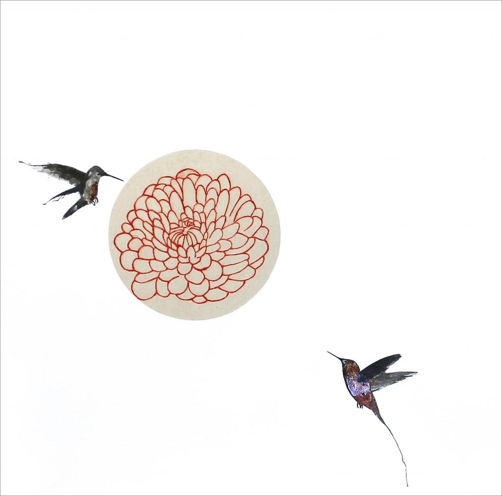 colibris,-crisantem-vermell