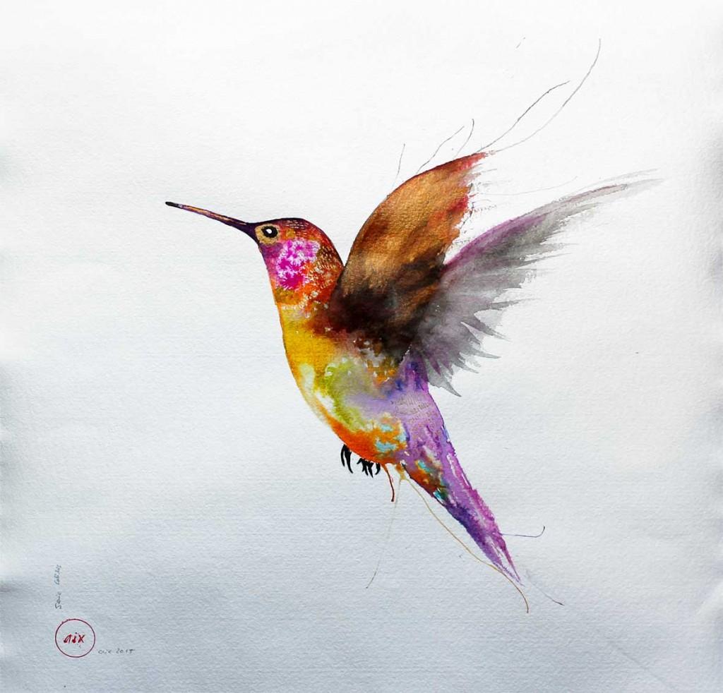 colibri-colors-II