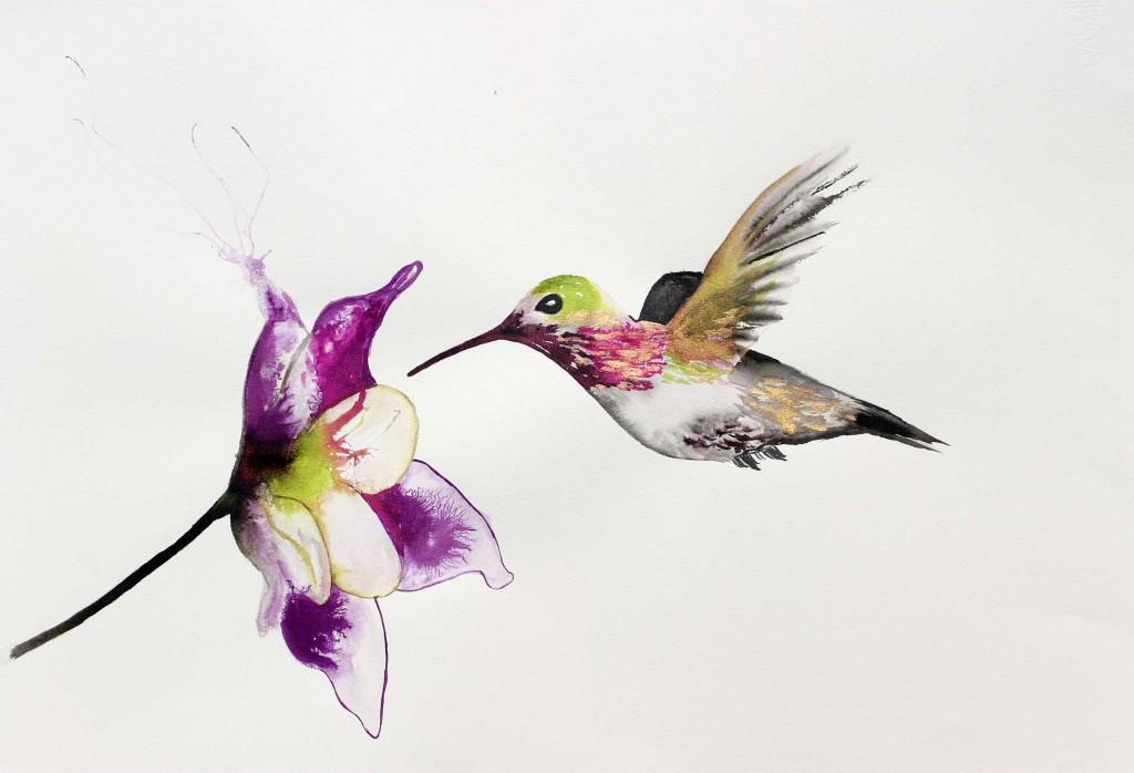 colibri--flor-aprop