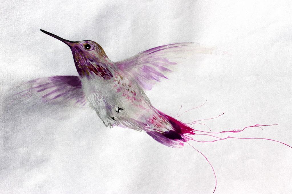 colibri lila 75x60cm
